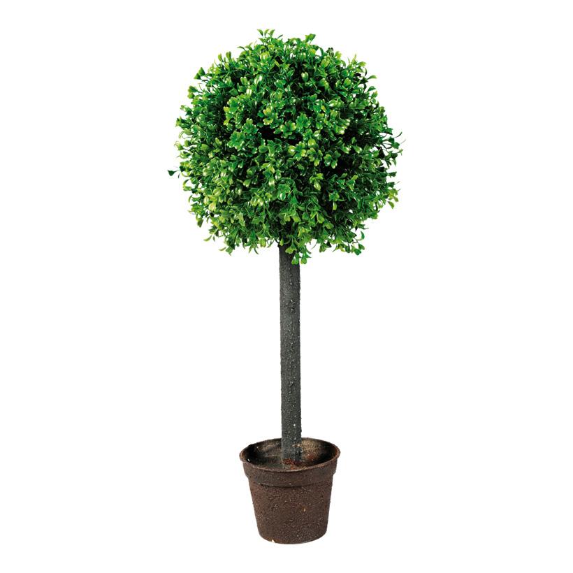 Buchsbaum im Topf, 60x25cm, Kunststoff