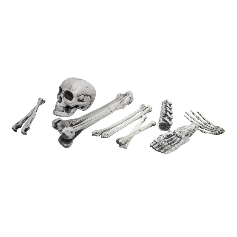Knochen-Set, 40cm im Netz, 12-teilig