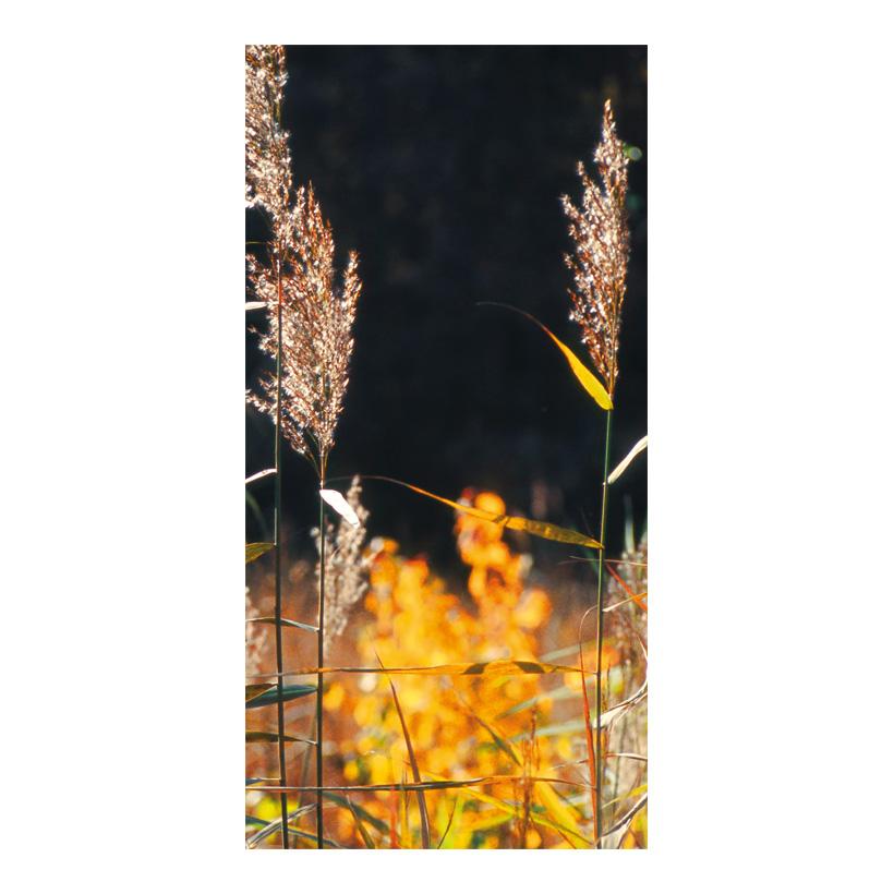 "# Motivdruck ""Schilfgras"", 180x90cm Stoff"