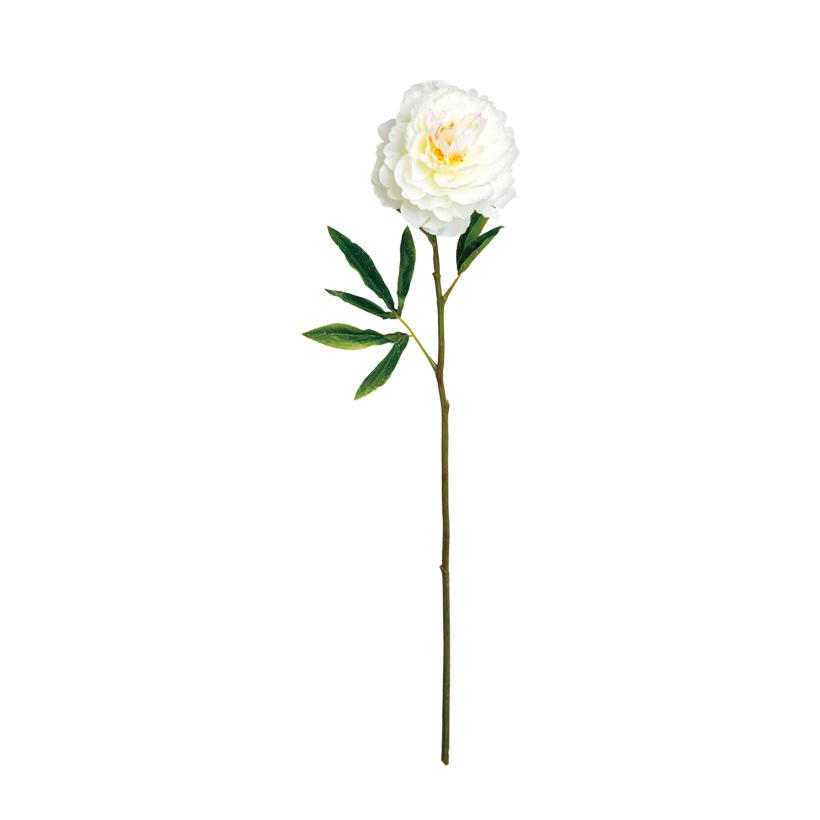 Pfingstrose, Ø 12cm, 70cm, Kunstseide