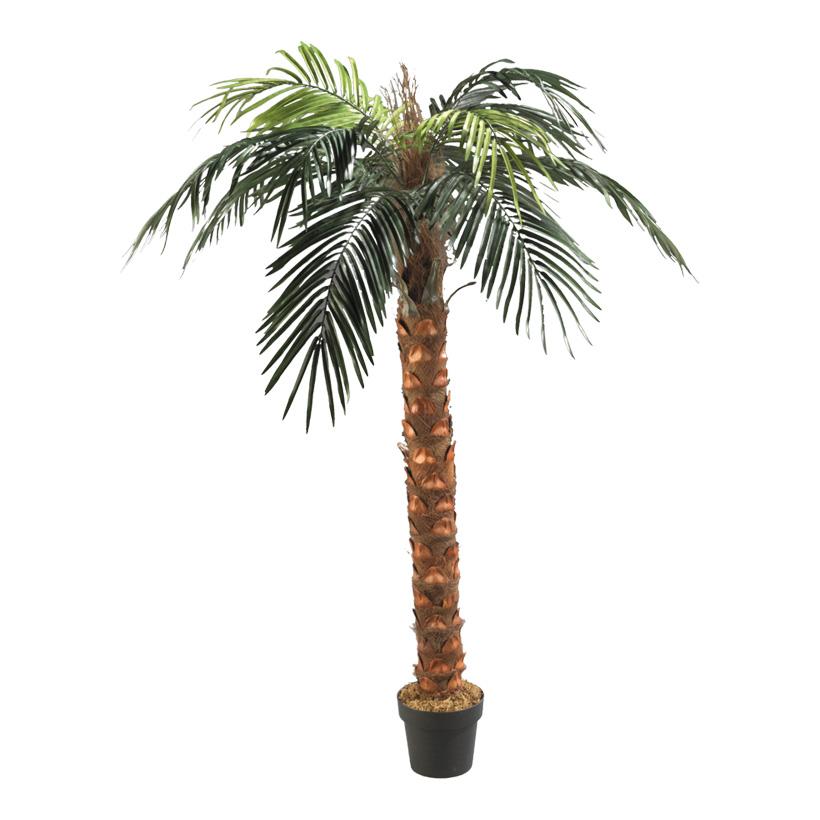 # Phönix-Palme im Topf, 180cm, Kunststoff, Kunstseide