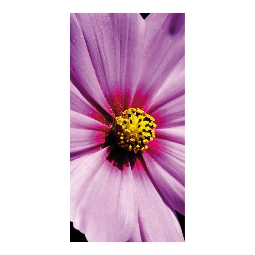 """# Motivdruck """"Cosmea"""", 180x90cm aus Papier"""