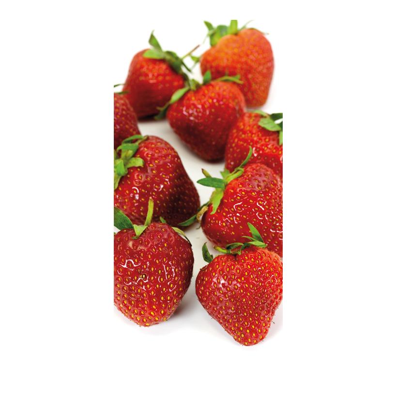 """# Motivdruck """"Erdbeeren"""", 180x90cm Stoff"""