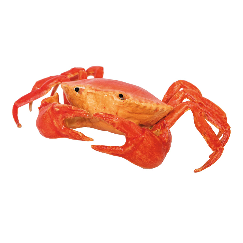 Krabbe, 22cm