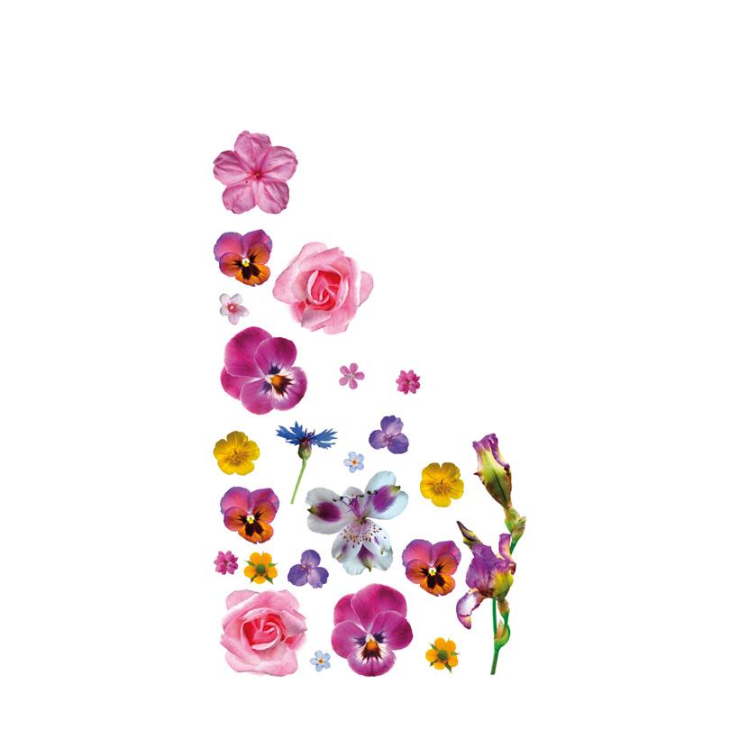 """# Motivdruck """"Flower"""", 180x90cm Papier"""