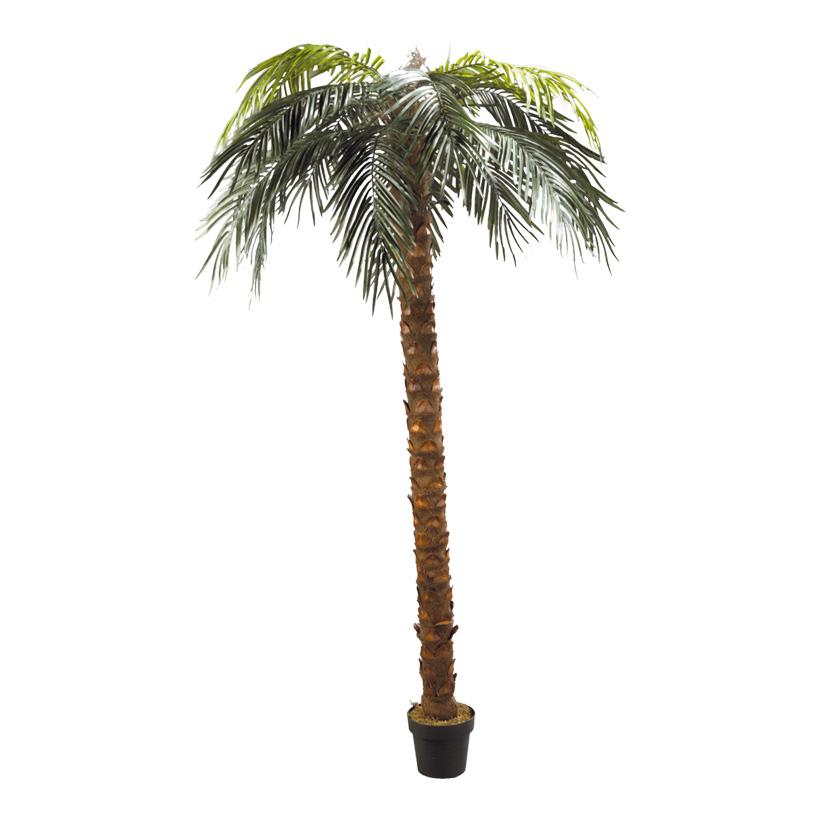# Phönix-Palme im Topf, 240cm, Kunststoff, Kunstseide