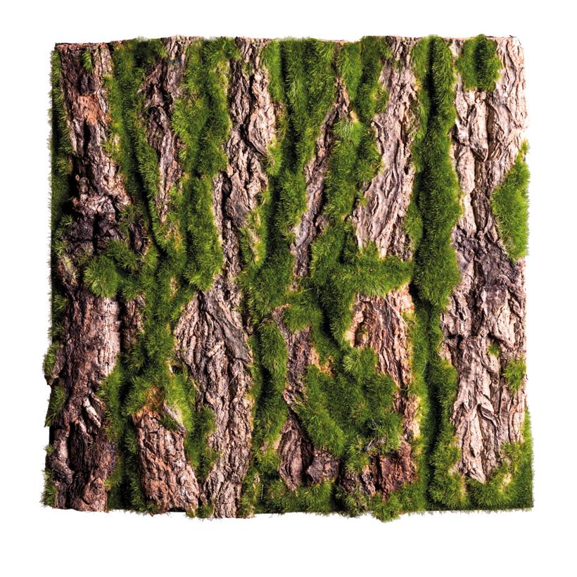 Baumrindenplatte, 30x30cm bemoost, mit echter Baumrinde