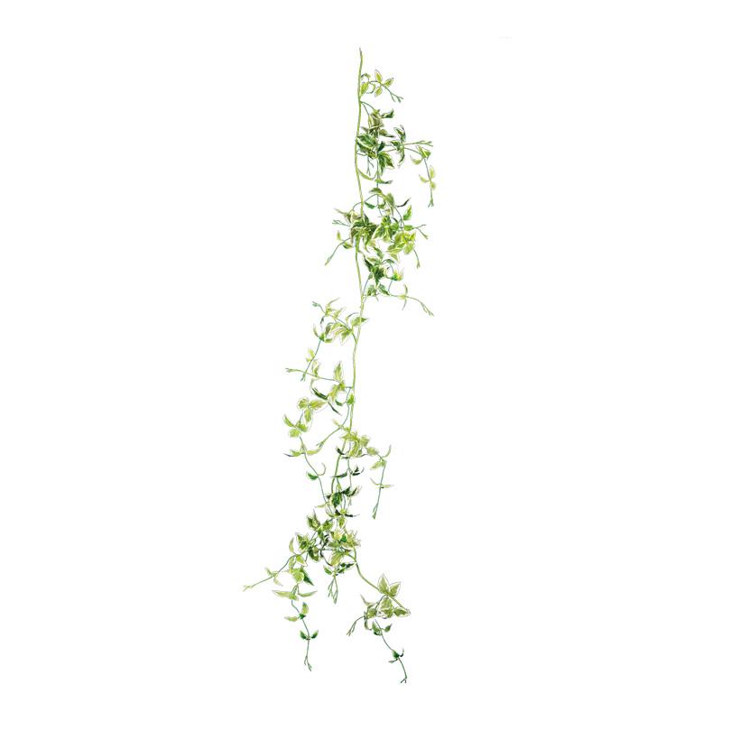 Birkenfeigenblattgirlande, 180cm Blättern und 6 Blütenköpfen
