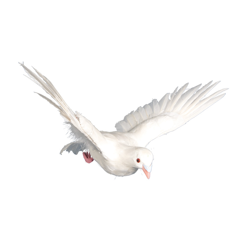 Taube, 30x40x22cm fliegend, aus Styropor, mit Federn