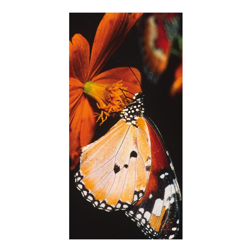"# Motivdruck ""Schmetterling"", 180x90cm Papier"