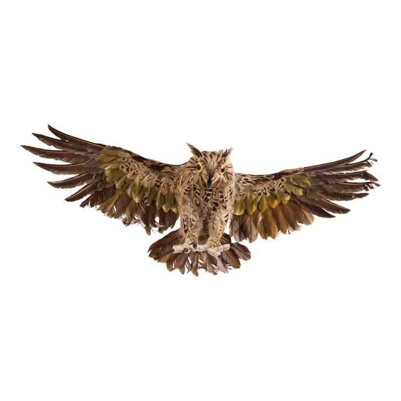 Eule, 55x30cm, mit Federn, Polyfoam, gespreizte Flügel