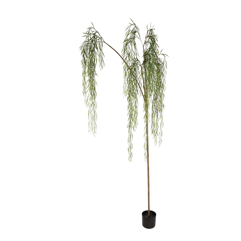 # Weidenbaum im Topf, Topf 15x13,5cm, 215cm, Kunststoff