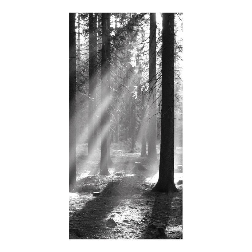 "# Motivdruck ""Waldstimmung"", 180x90cm Stoff"