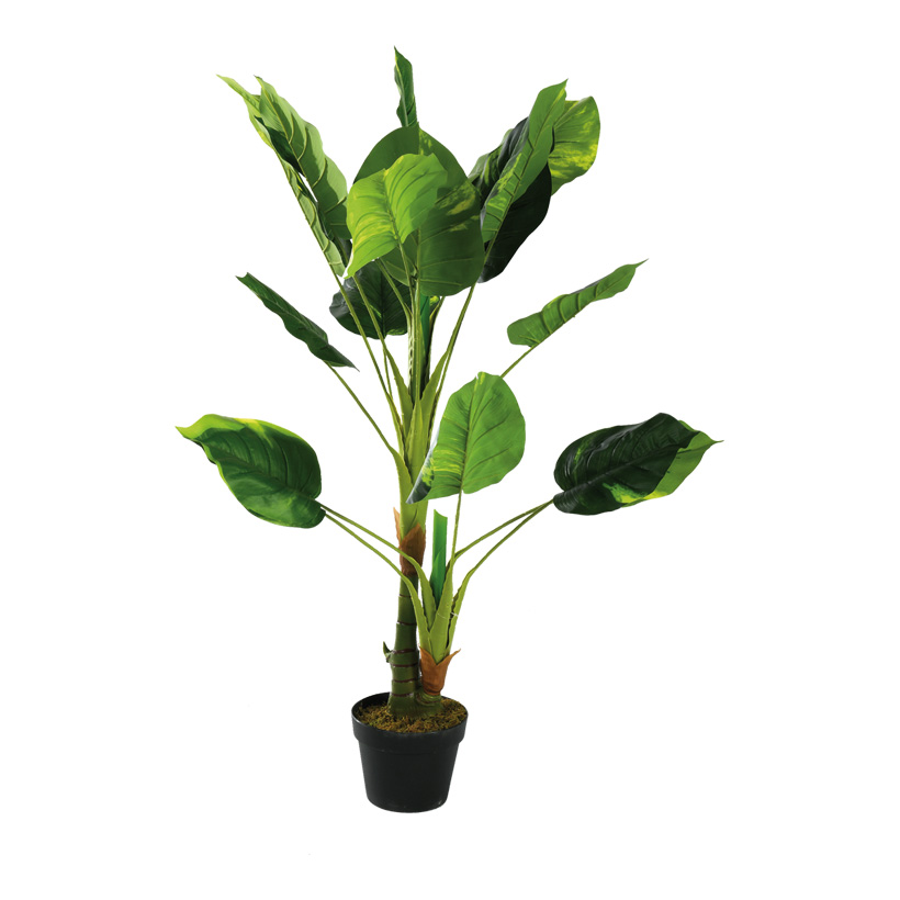 # Philodendron Pflanze, 110cm mit Kunststoff Topf