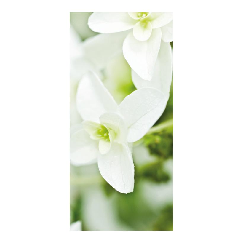 "# Motivdruck ""Blütentraum"", 180x90cm Papier"