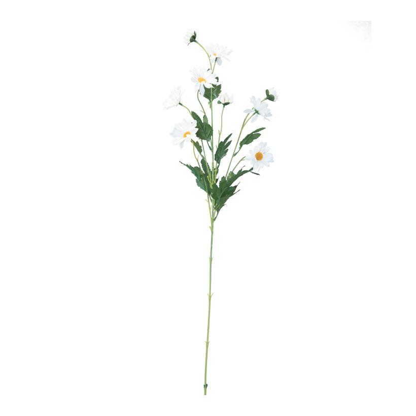 Margeritenzweig, 80cm 5-fach