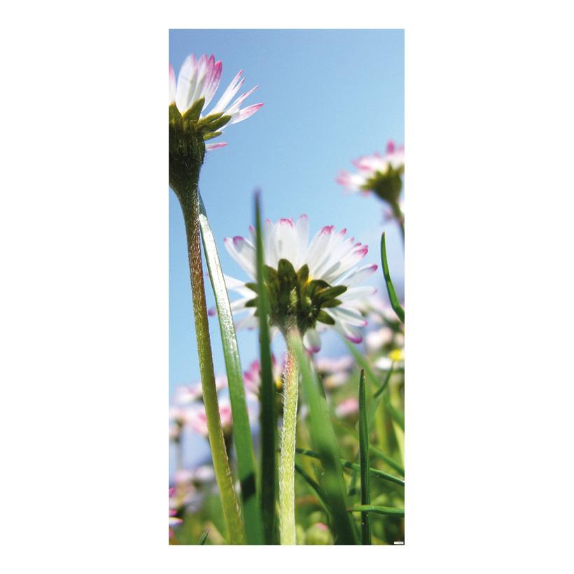 "# Motivdruck ""Gänseblümchen"", 180x90cm Stoff"