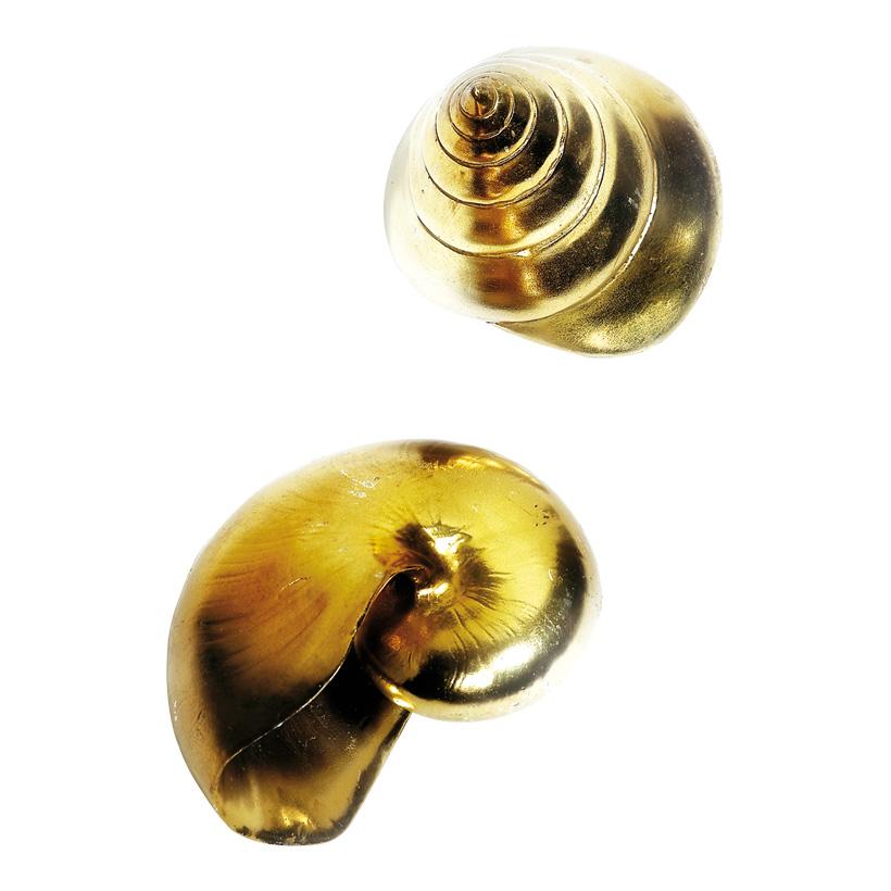 # Meeresschnecken 10-12 cm Kunststoff, glänzend, 2 tlg./Satz