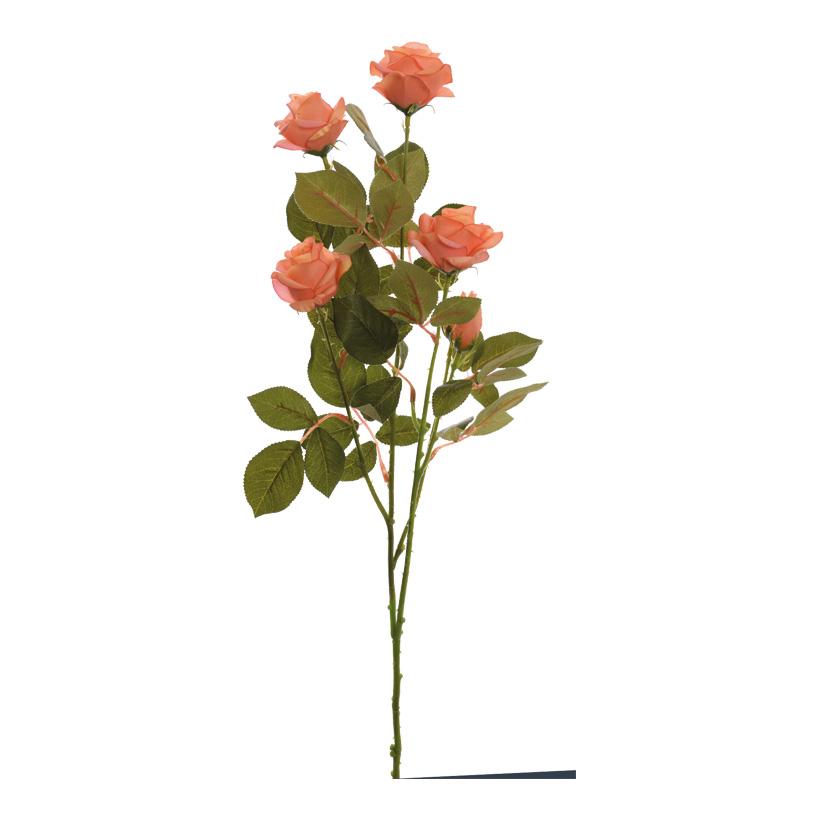 Rosenzweig, 5-fach, 71cm