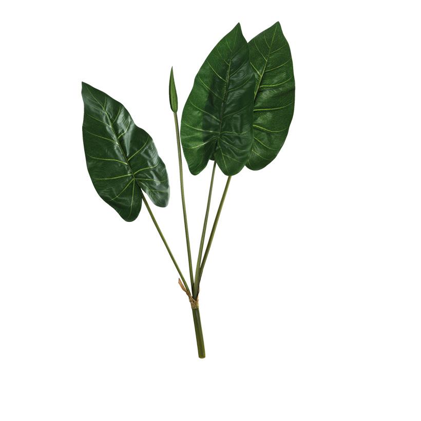 Calla-Lilienblätter, 76cm
