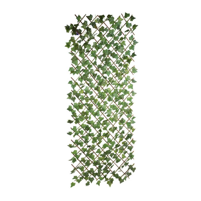 Zaun mit Efeu, 180x80cm, Kunststoff
