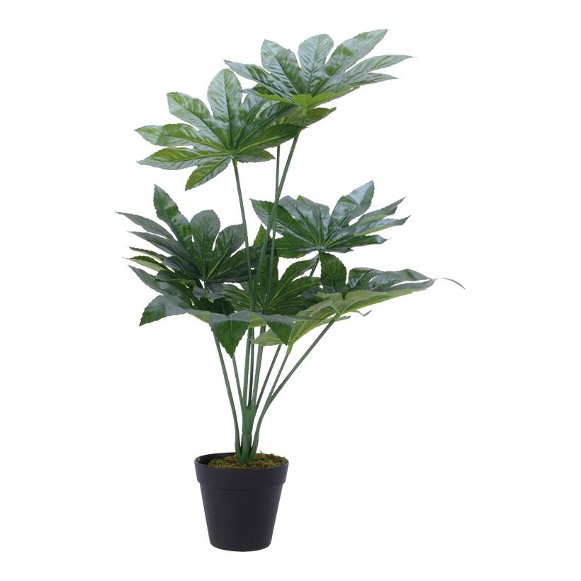 # künstliche Aralia 54cm mit 1 Stamm und 10 Blättern, im Topf