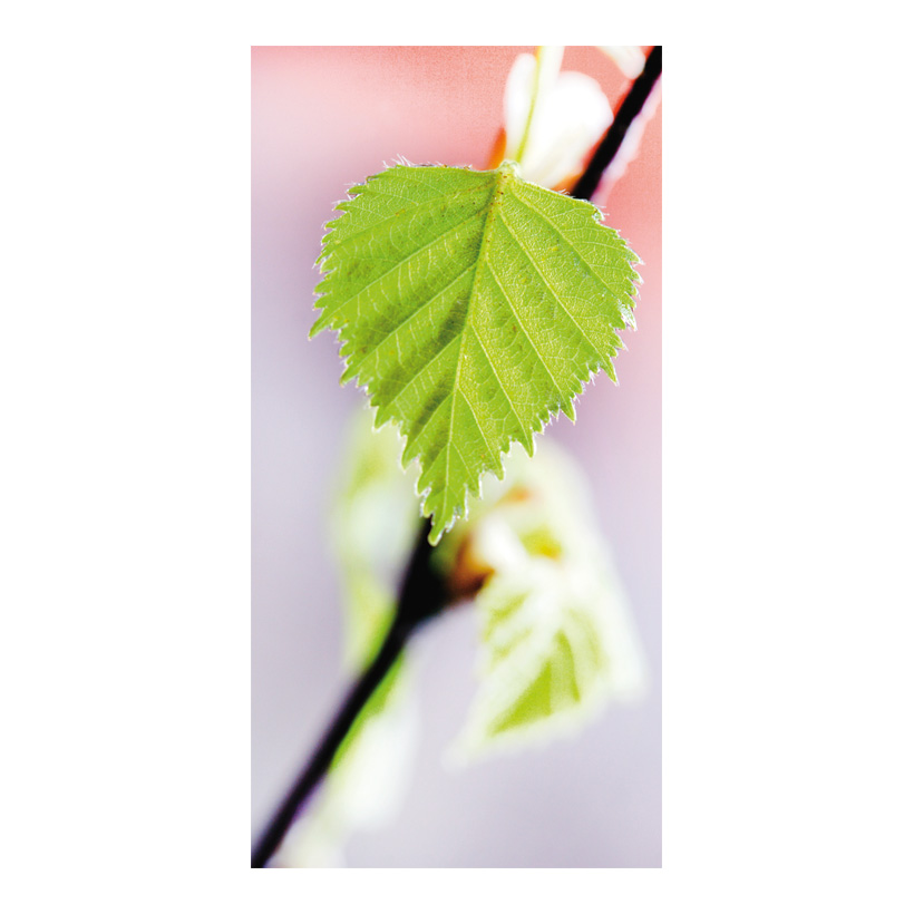 "# Motivdruck ""Blatt im Frühling"", 180x90cm Stoff"