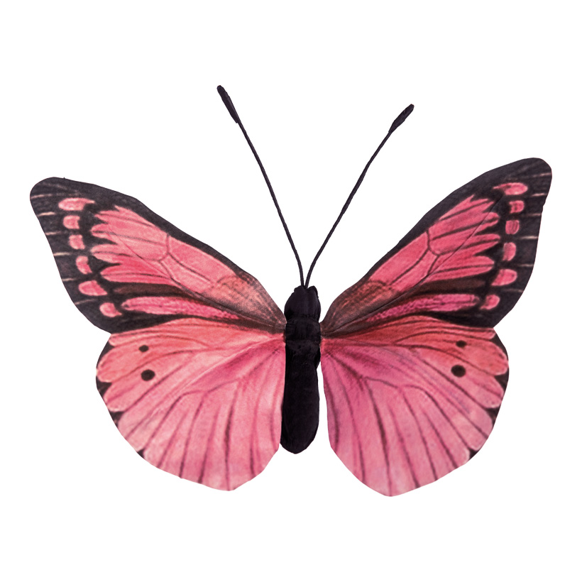 Schmetterling, H: 30cm aus Papier