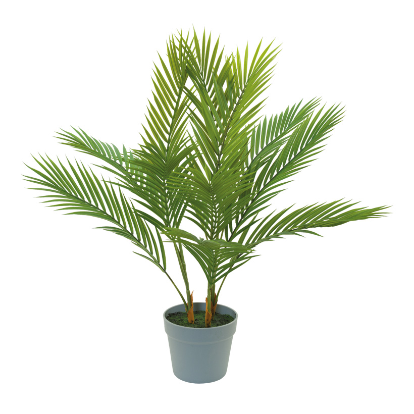 Palme, H: 75cm im Topf, 12-fach, aus Kunststoff