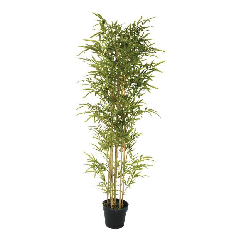 # Bambus-Baum, 160cm mit Kunststoff Topf