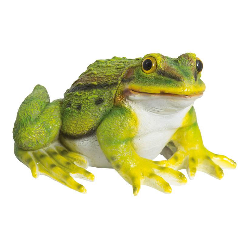 # Frosch, 25x22x15cm, Polyresin, für Innen und Außen